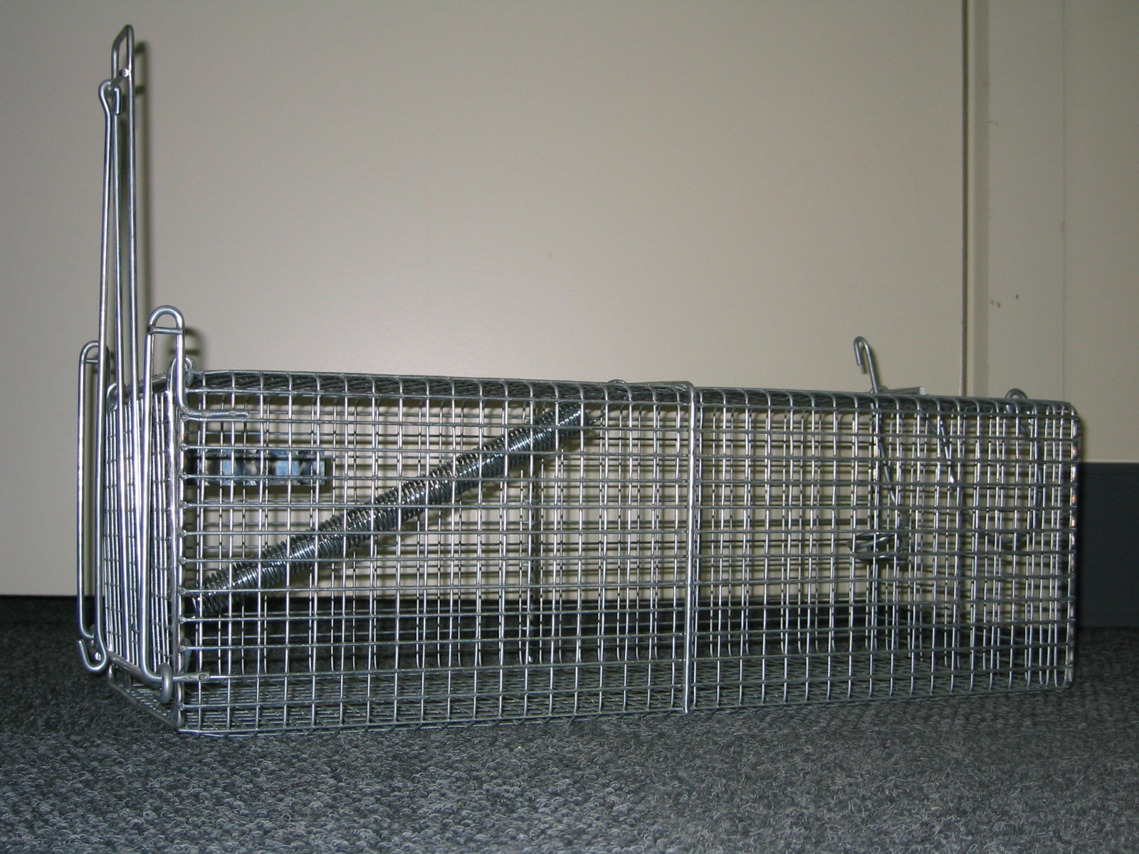 Detail image of Wiretainers Bandicoot Trapfrom Automatic Wire